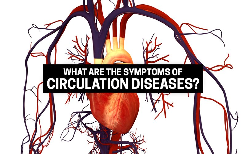 What Are The Symptoms Of Circulation Diseases?